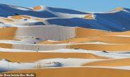 """Dëbora e pazakontë në shkretëtirë, besimtarët: Tregues i """"fundit të kohës"""""""